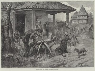 Shoeing Oxen and Horses at a Servian Smithy