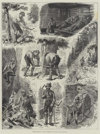 Wood-Cutting in the Forests of Austria and Bavaria