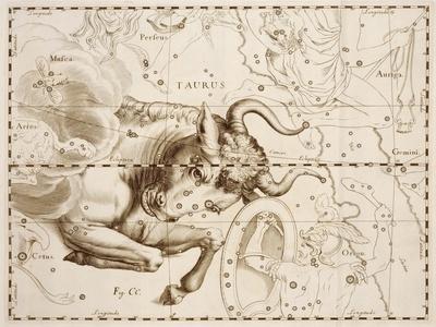 Taurus (Zodiac Sign)
