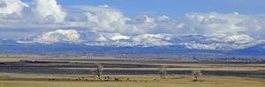 A Panorama of the Carson Valley after a Snowstorm by John Alves