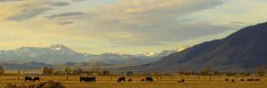 Late Afternoon Light Bathes a Majestic View of the Carson Valley in Nevada by John Alves