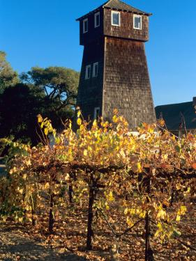 Water Tank Tower at the Handley Cellars Winery, Mendocino County, California, USA by John Alves