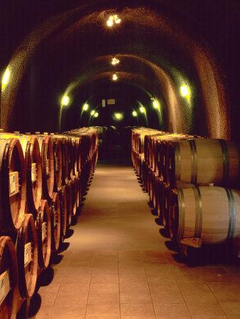 Wine Cave at the Pine Ridge Winery on the Silverado Trail, Napa Valley, California, USA