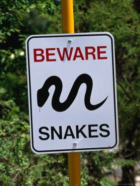 Snake Sign at Museum of Modern Art in Heidi, Melbourne, Australia by John Banagan