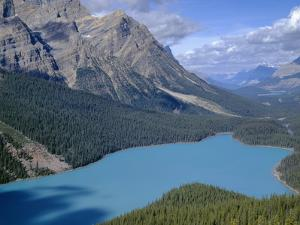 Alberta, Banff National Park, Turquoise Color of Peyto Lake Is Produced from Glacial Silt Suspended by John Barger