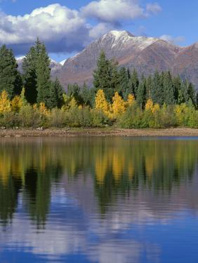 Colorado, Gunnison National Forest, Mount Owens by John Barger
