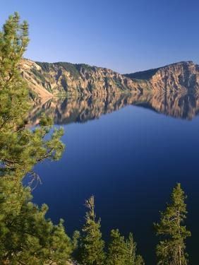 OR, Crater Lake NP. Whitebark pines frame view south from Palisade Point towards Sentinel Rock by John Barger