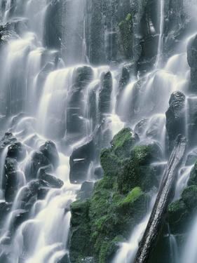 OR, Mount Hood NF. Mount Hood Wilderness, Ramona Falls is formed by a small creek by John Barger