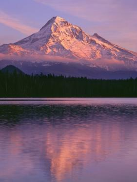 OR, Mount Hood NF. Sunset light reddens north side of Mount Hood with first snow by John Barger