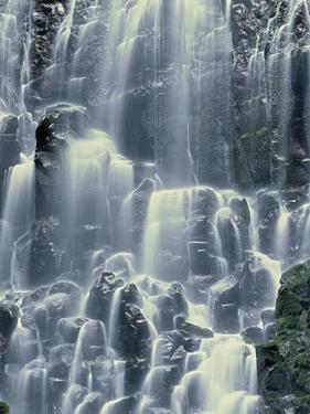 Oregon. Mount Hood NF, Mount Hood Wilderness, Ramona Falls is formed by a small creek by John Barger