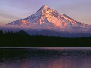 Oregon. Mount Hood NF, sunset light reddens north side of Mount Hood with first snow of autumn by John Barger