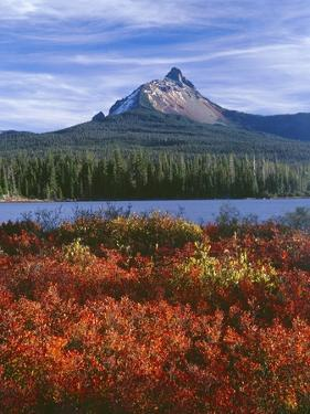 Oregon. Willamette NF, Mount Washington rises beyond autumn-colored huckleberry and Big Lake. by John Barger