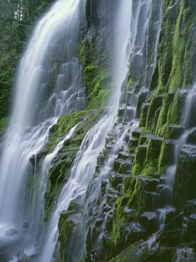 Oregon. Willamette NF, Three Sisters Wilderness, Lower Proxy Falls displays multiple cascades by John Barger