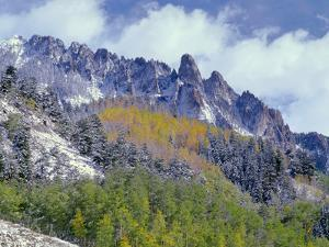 USA, Colorado, Uncompahgre National Forest, Fall Snow on Ophir Needles Above Aspen and Conifers by John Barger
