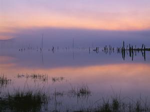 USA, Oregon. Deschutes National Forest, pastel sky at dawn and fog over Crane Prairie Reservoir. by John Barger
