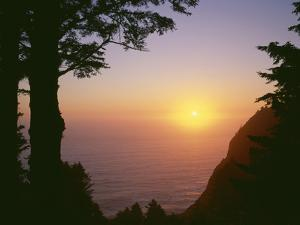 USA, Oregon. Oswald West State Park, summer sunset viewed from below Neahkanie Mountain. by John Barger
