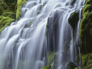 USA, Oregon, Willamette National Forest, Three Sisters Wilderness, Upper Proxy Falls by John Barger