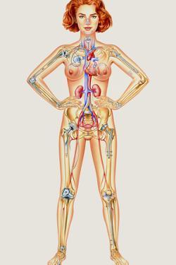 Prosthetic Woman: Artwork of Artificial Implants by John Bavosi