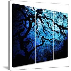 Japanese Ice Tree 3 piece gallery-wrapped canvas by John Black