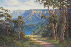 Blue Mountains Bushwalk by John Bradley