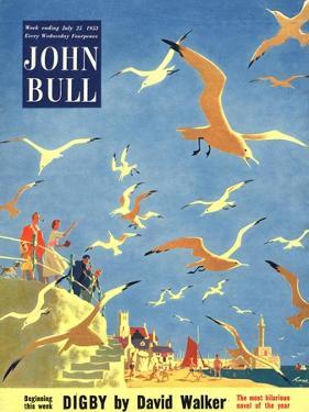 John Bull, Holiday Beaches Seagulls Magazine, UK, 1953