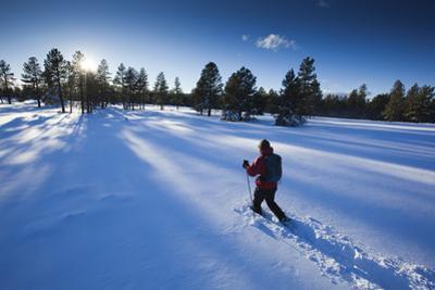 A Man Snowshoeing in Flagstaff, Arizona