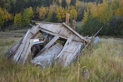 Ghost Town Ruin in Bonanza, Colorado by John Burcham