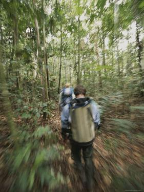 Panned View of Hikers in a Forest by John Burcham