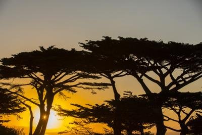 Sunrise in Monterey Bay, California
