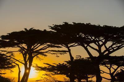 Sunrise in Monterey Bay, California by John Burcham