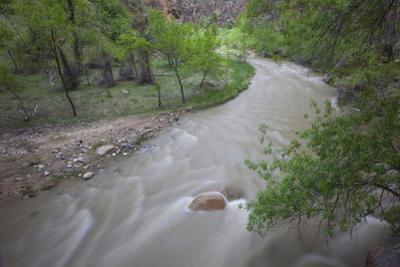 Virgin River Running Through Zion National Park, Utah by John Burcham