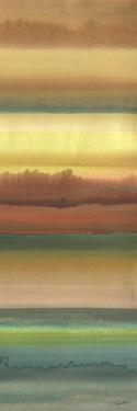 Ambient Sky II by John Butler