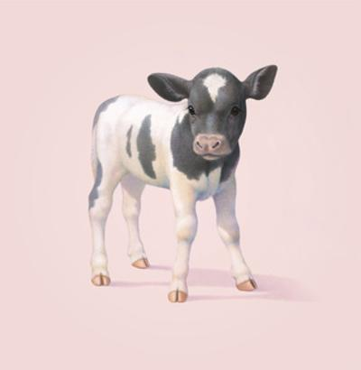 Cow by John Butler Art