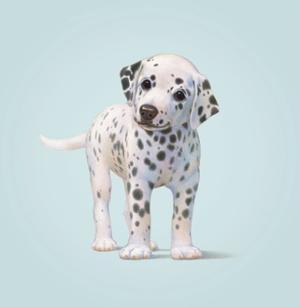 Dog by John Butler Art