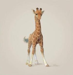 Giraffe by John Butler Art