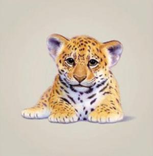 Jaguar by John Butler Art
