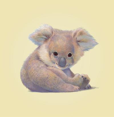 Koala by John Butler Art