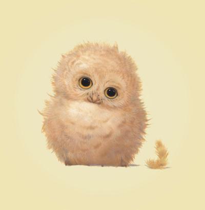 Owl by John Butler Art