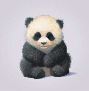 Panda by John Butler Art