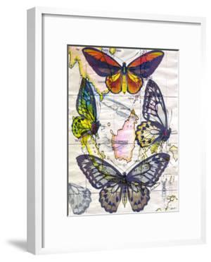 Butterfly Map IV by John Butler