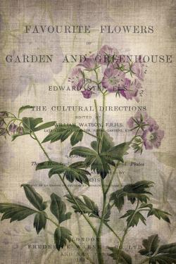 Favorite Flowers IV by John Butler