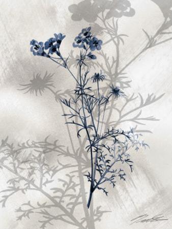 Indigo Bloom I by John Butler