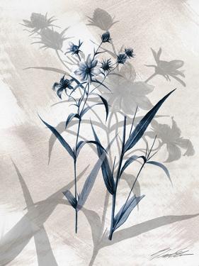 Indigo Bloom IV by John Butler