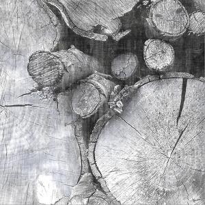 Logging Light III by John Butler