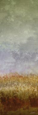 Lush Field II by John Butler