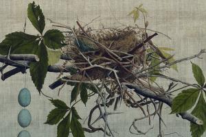 Nesting I by John Butler