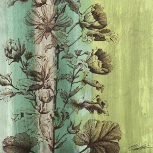 Painted Botanical II by John Butler