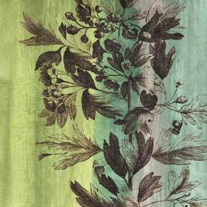 Painted Botanical III by John Butler