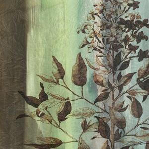 Painted Botanical IV by John Butler