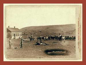Branding Cattle by John C. H. Grabill
